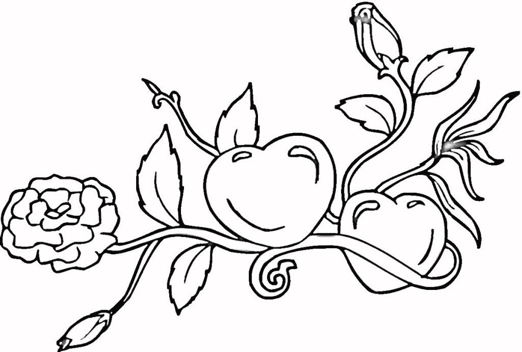 Rose Flower Coloring Pages hearts and roses valentines