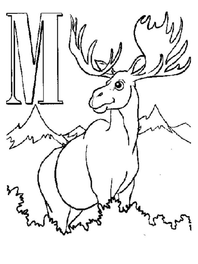 Letter M Moose Coloring Pages | Coloring Pages