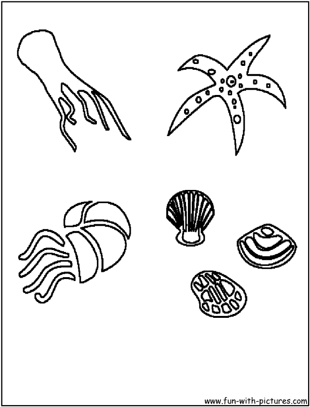 Sea star coloring page coloring home for Sea star coloring page