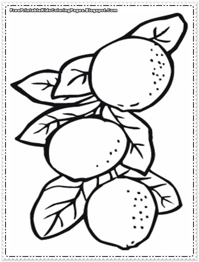 Educational Coloring Pages Pdf : Educational orange tree coloring pages laptopezine
