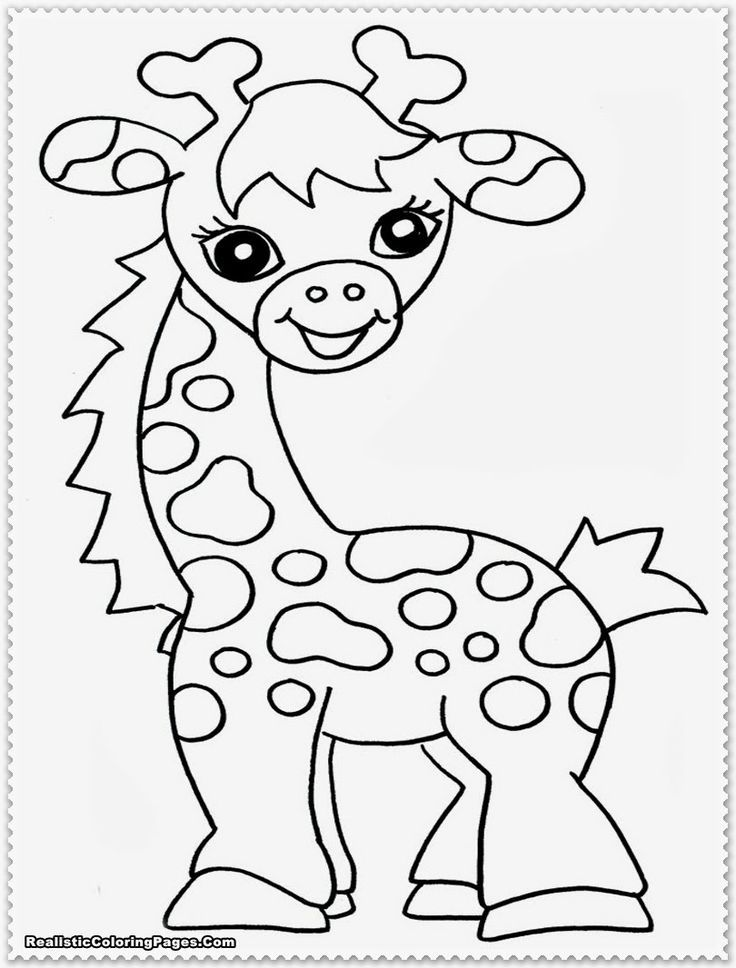 Zoo Animal Templates Coloring