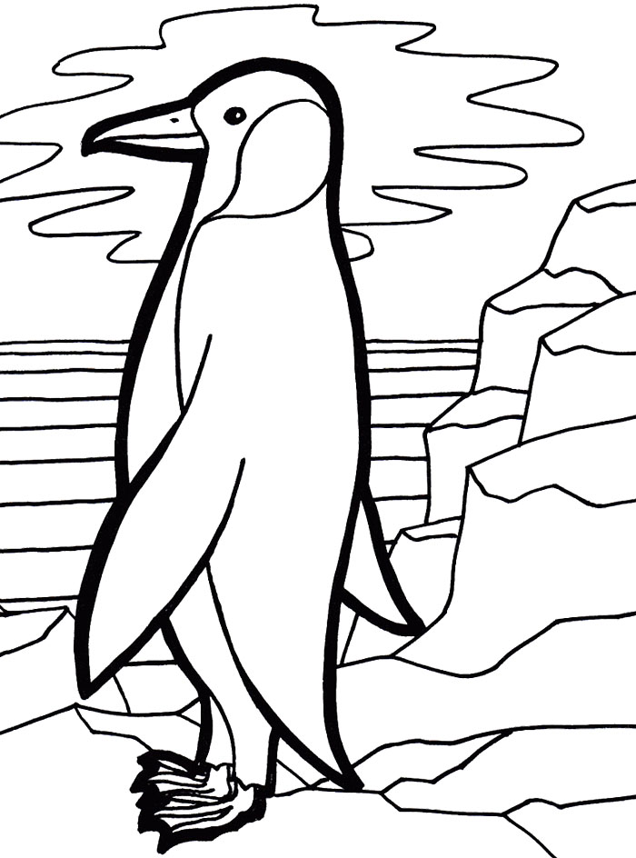 Emperor penguin coloring page az coloring pages for Free coloring pages of penguins
