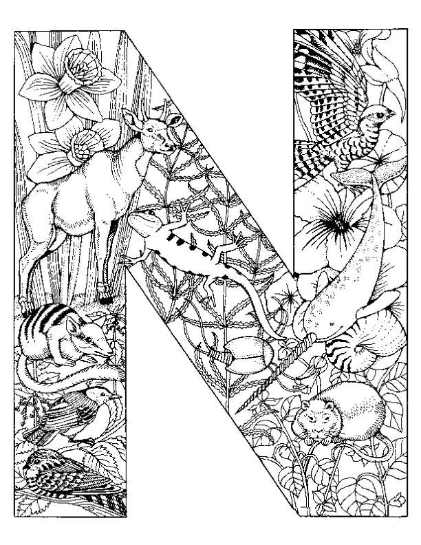 Alphabet Coloring Pages N : Adult coloring page home
