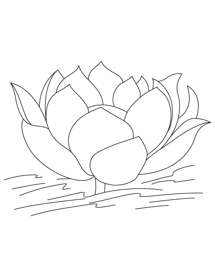 Lotus flower in water coloring pages | Download Free Lotus flower