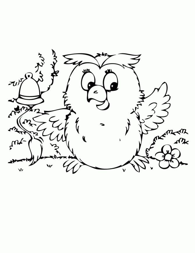 coloring pages of owl babies - photo#22
