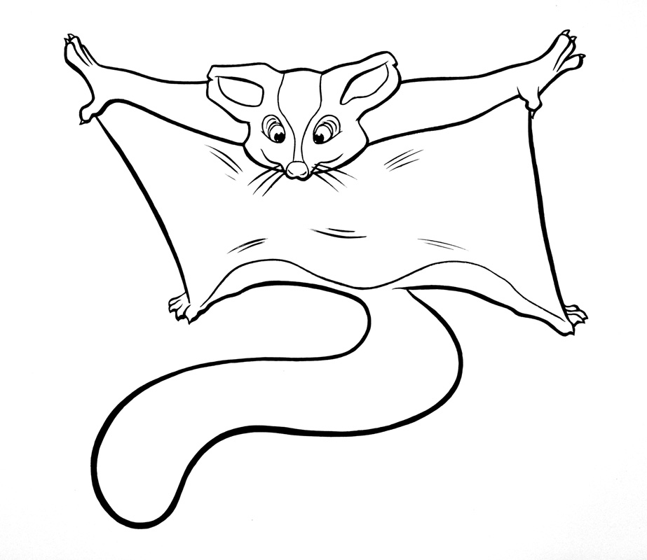 google coloring pages - photo#34