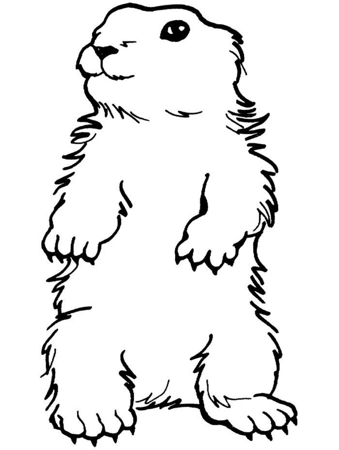 groundhog day coloring pages kids - Groundhog Coloring Pages Kids