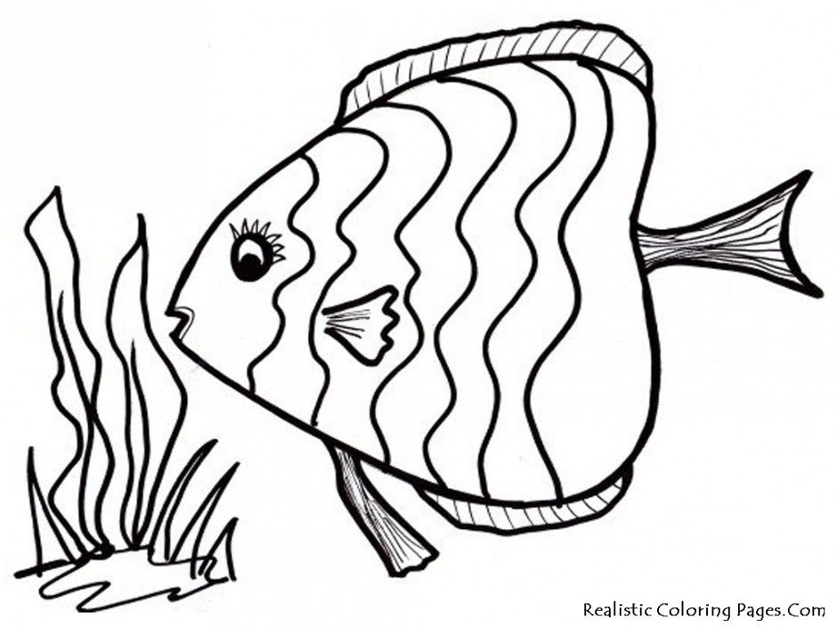 How to Draw a RAINBOW Fish Coloring Pages Using the letter 'C ... | 705x940