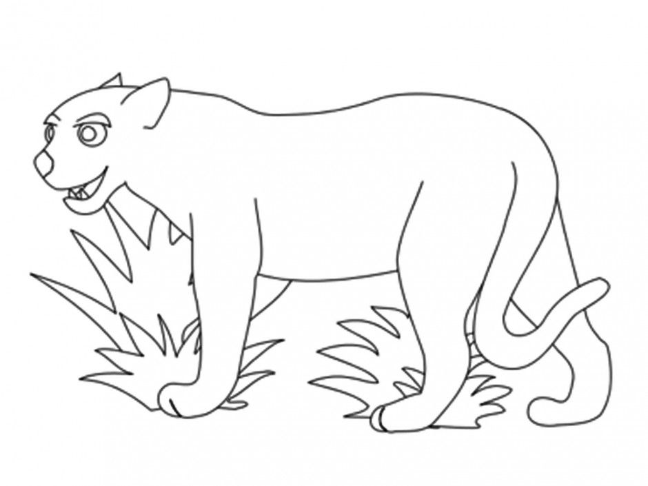 Rainforest Animals Coloring Pages Jaguar Coloring Pages For Kids