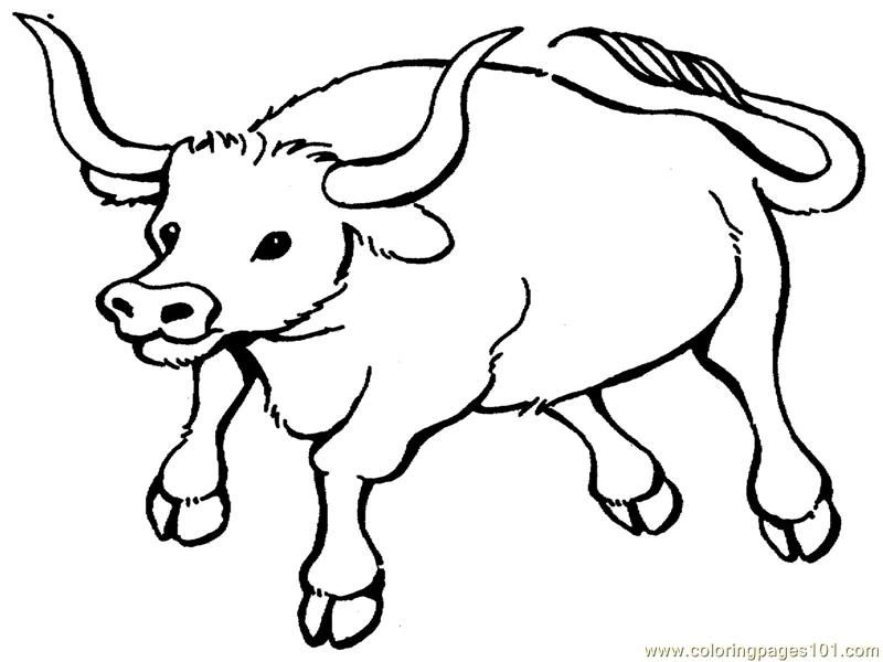 Coloring Pages Bull (Mammals > Bull) - free printable coloring