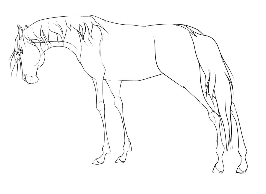Free Horse Lineart Re Made By WolfWhisperer4Life