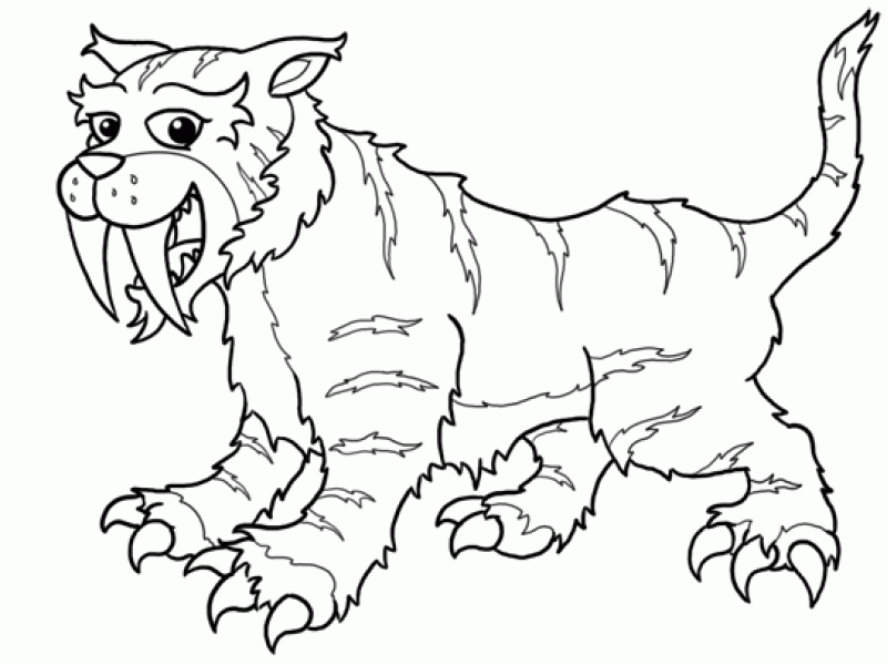 saber-tooth-tiger-drawing-71kyp564 - HD Printable Coloring Pages