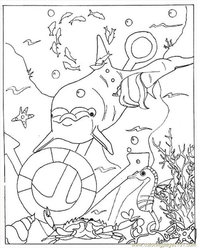 free marine mammals coloring pages - photo#16