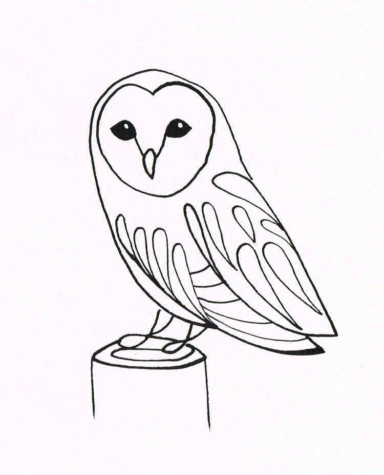 Owl line drawing az coloring pages for Draw the owl