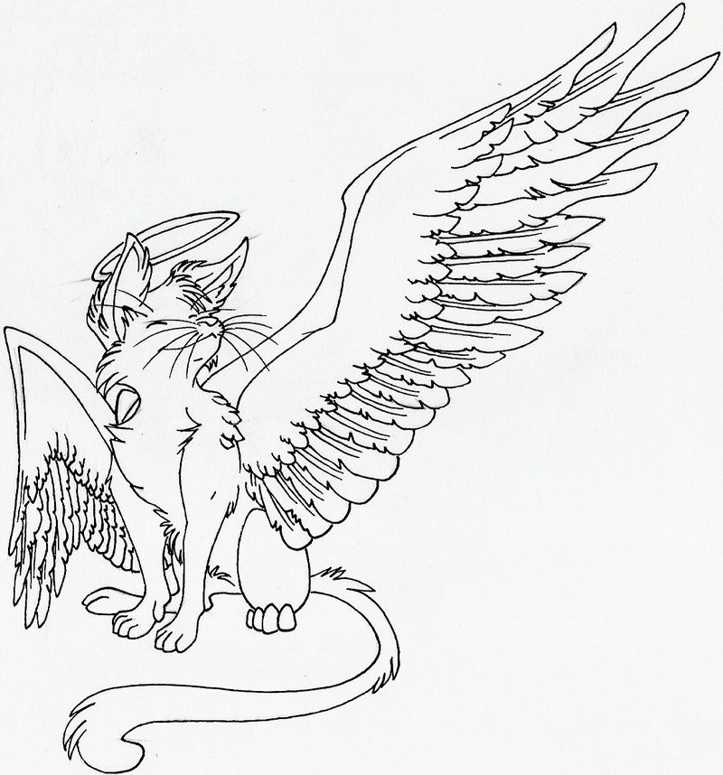 Warrior Cats With Wings Coloring Pages Coloring Pages With Wings Coloring Pages
