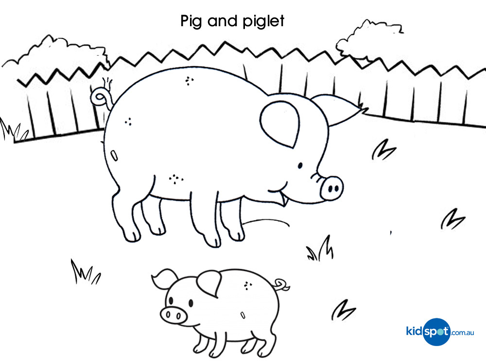 Pigs Coloring Pages For Kids