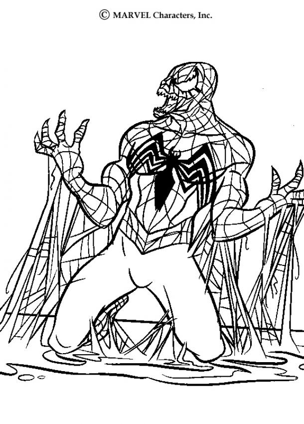 spectacular spiderman coloring pages image search results
