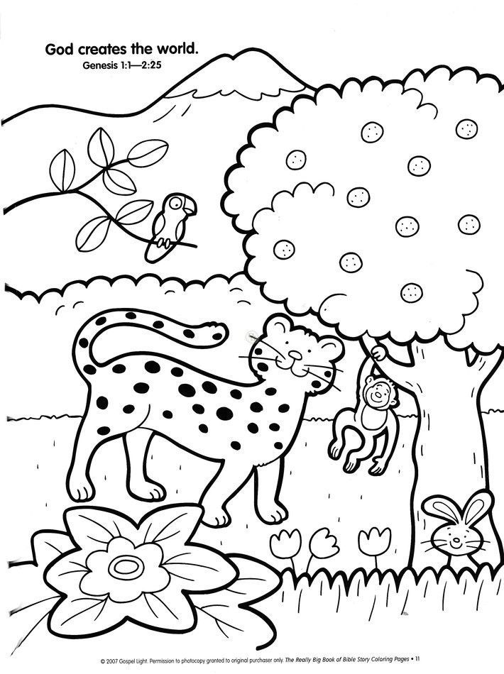 Creation Coloring Pages For Kindergarten : Preschool creation coloring pages home