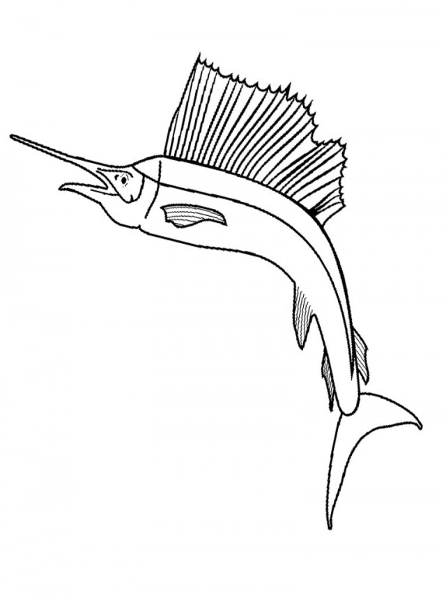 coloring book pages bass - photo#32