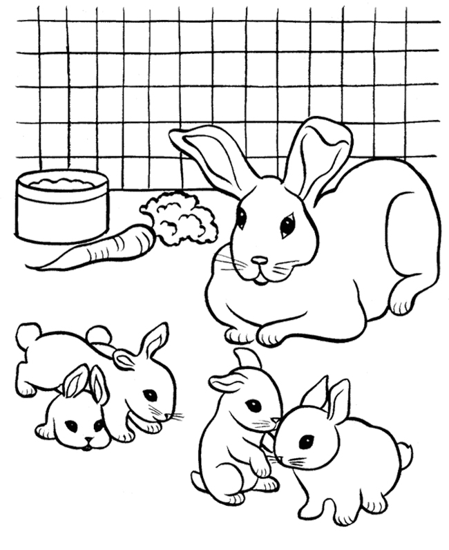 Pet Store Coloring Pages