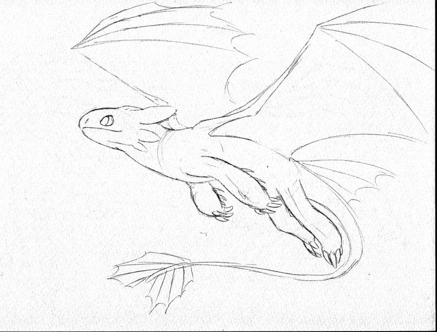Hiccup And Toothless Coloring Pages