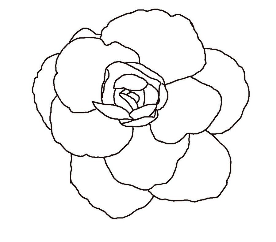 Line Art Flowers : Line drawing flower newtattoodesigns coloring home