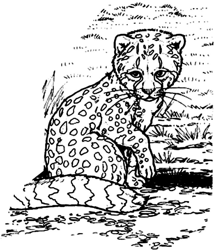 Coloring Pages Cheetah Girls - Coloring Home