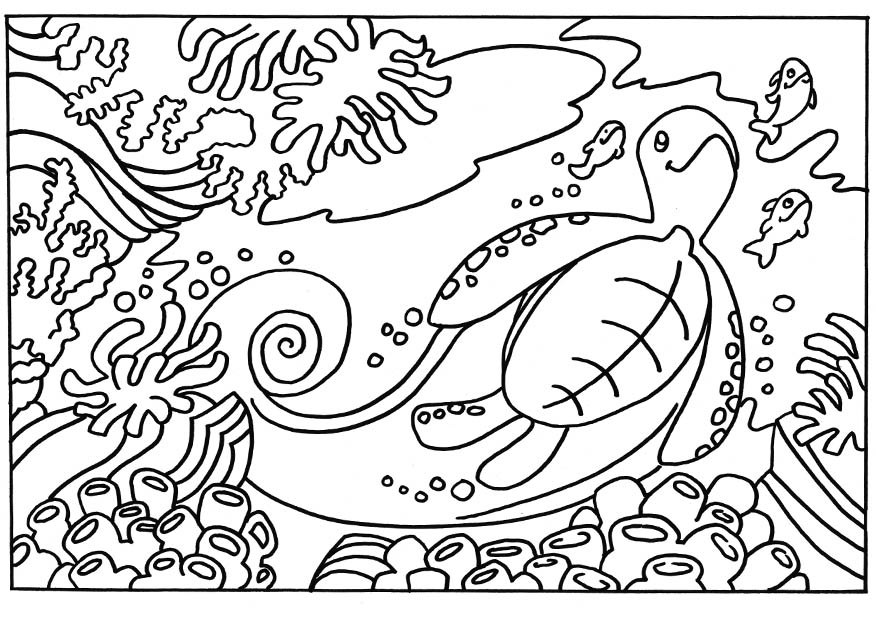 Abstract Coloring Pages Turtle