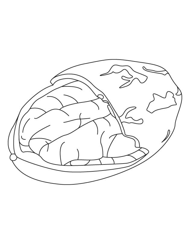 largemouth bass coloring pages - photo#16