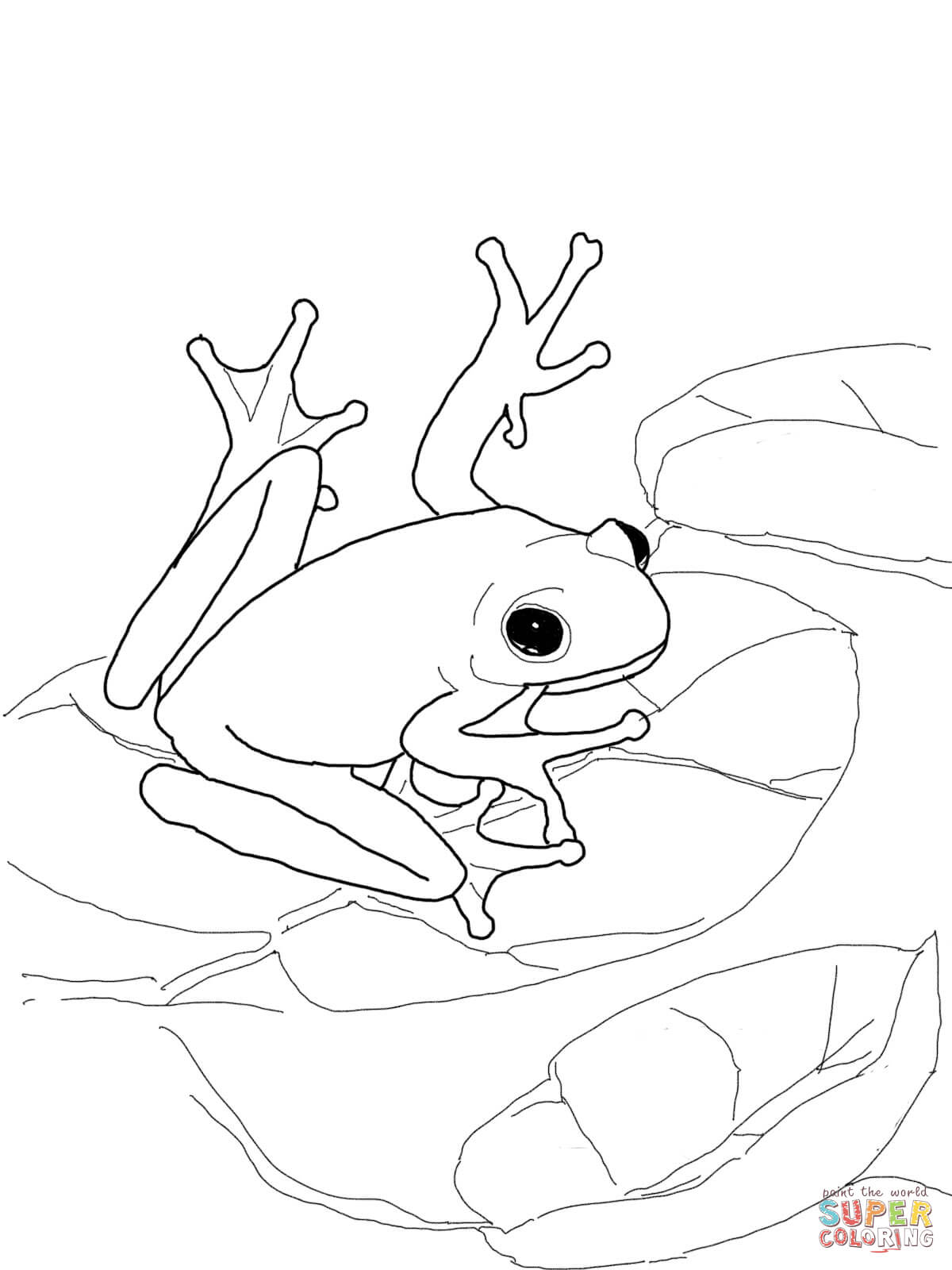 Poison-dart Frog Coloring Page - Coloring Home