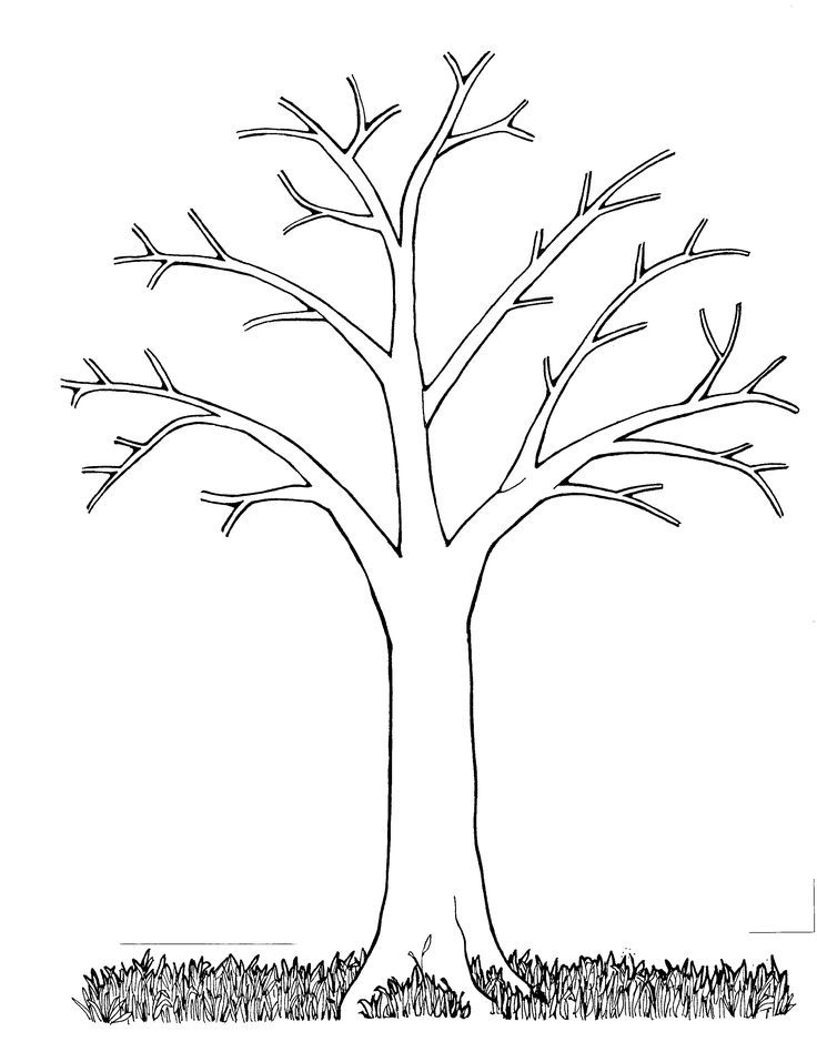 Bare Fall Tree Coloring Page - Coloring Home
