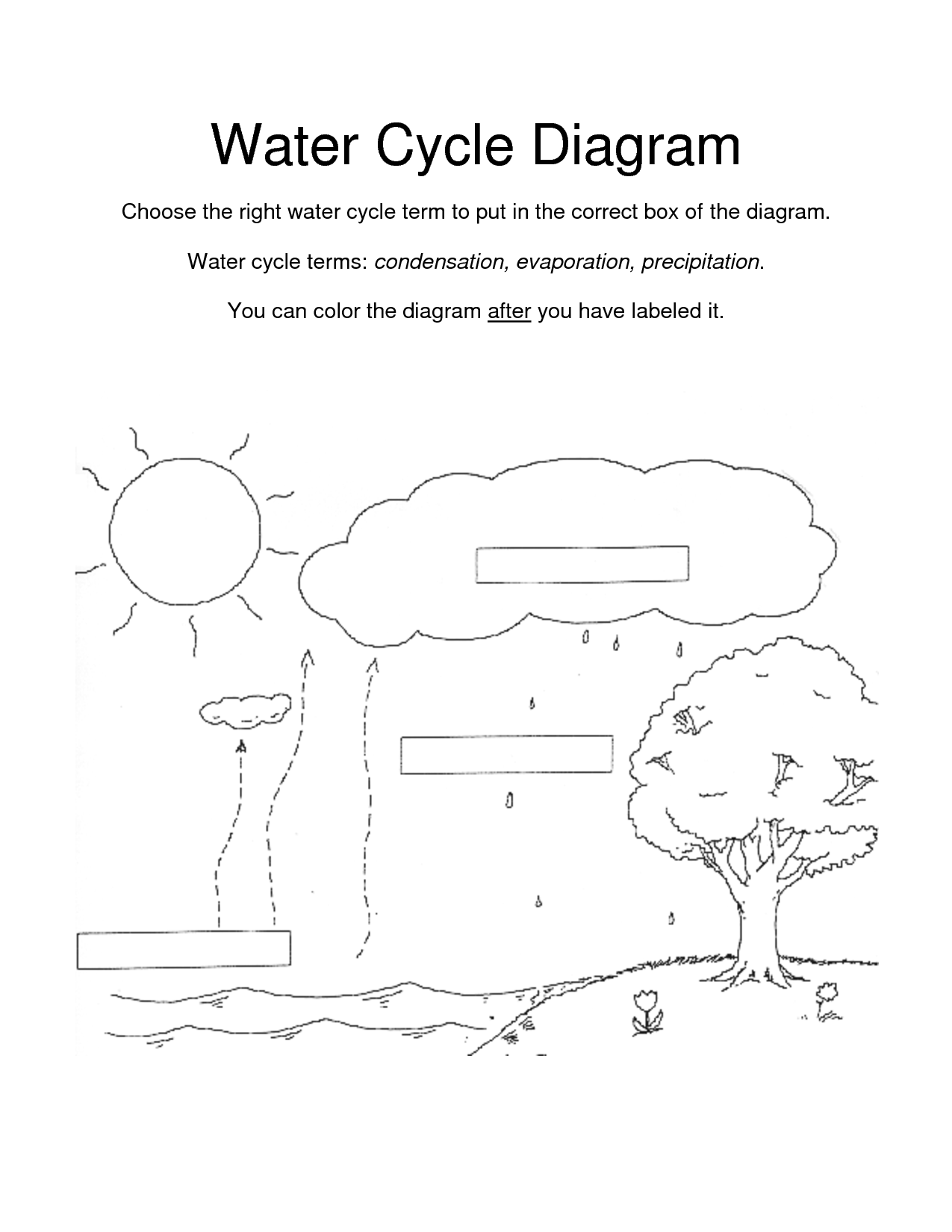 Water Cycle For Kids Coloring Page Coloring Home