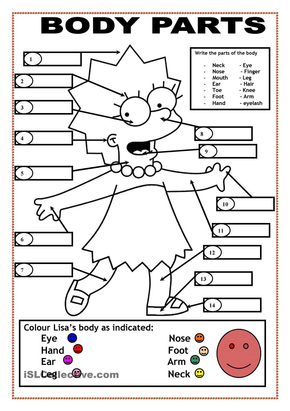 preschool body coloring pages - photo#23