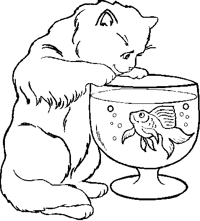 Funny Cat Pics For Kids - Coloring Home