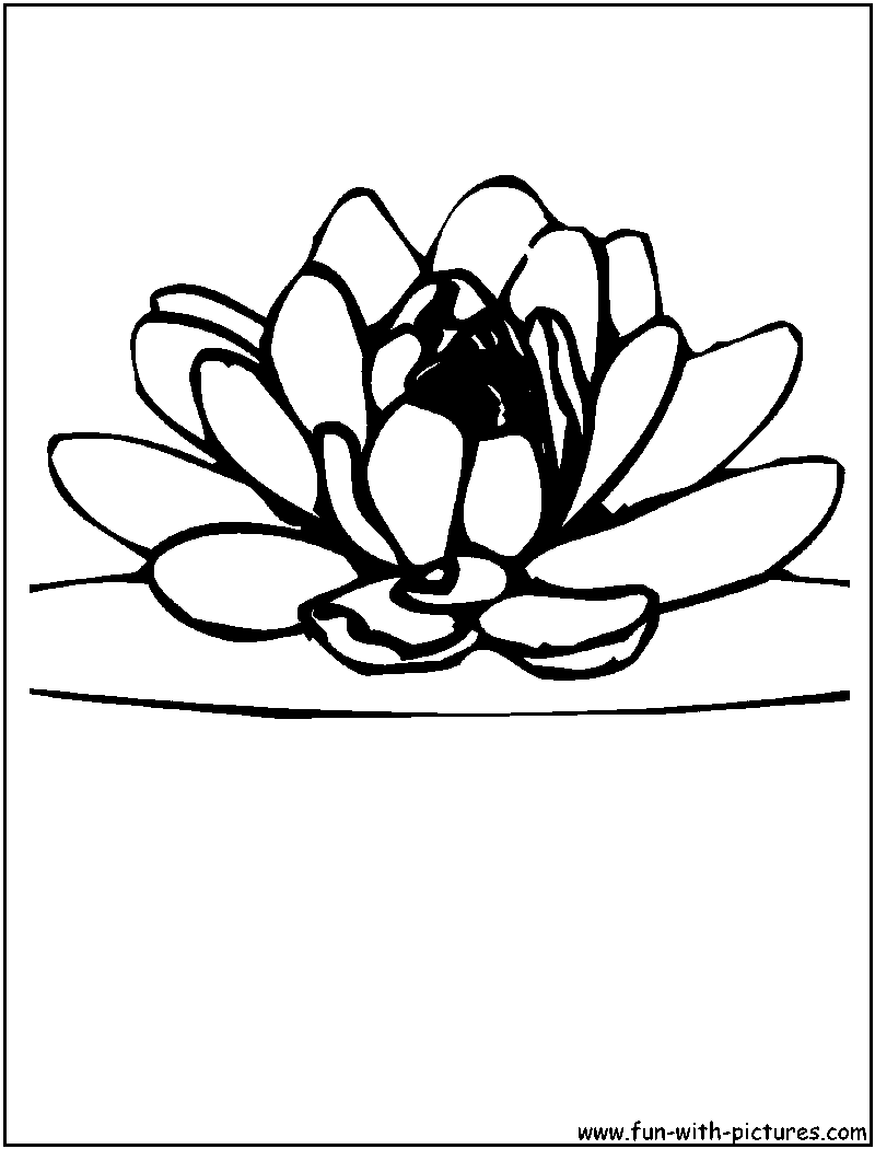 Coloring pages for kids lotus flower coloring pages for kids coloring pages for kids lotus flower coloring pages for kids mightylinksfo