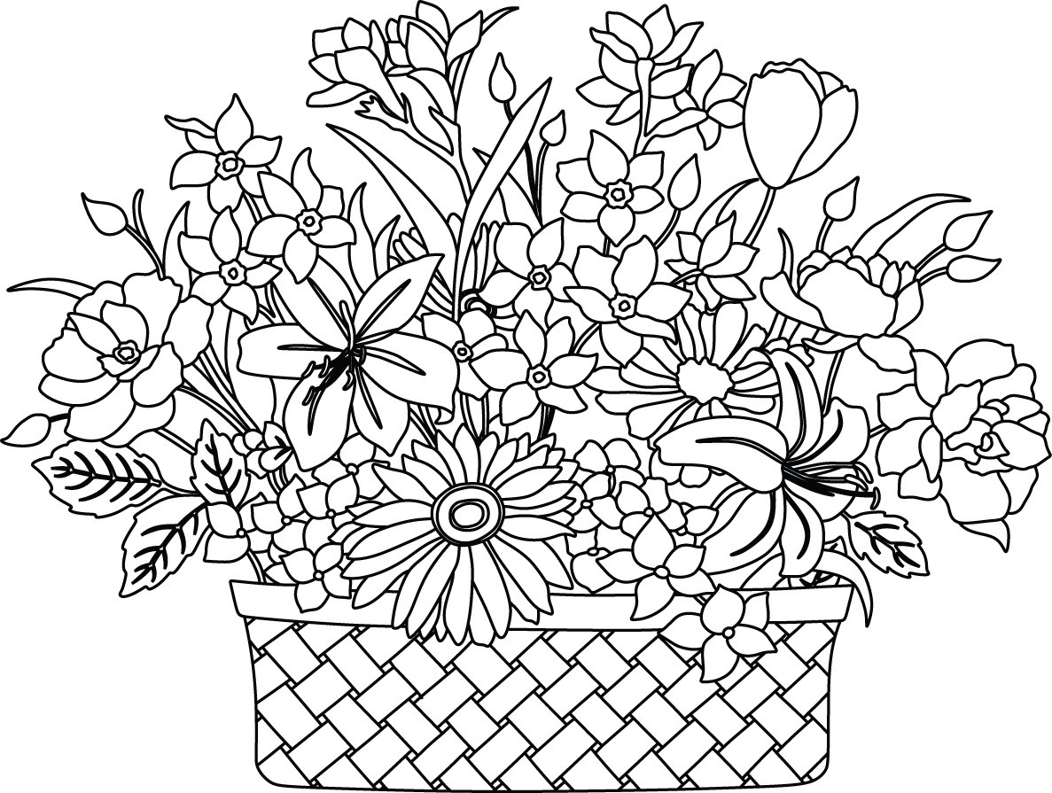 Pics For > Flower Basket Drawing