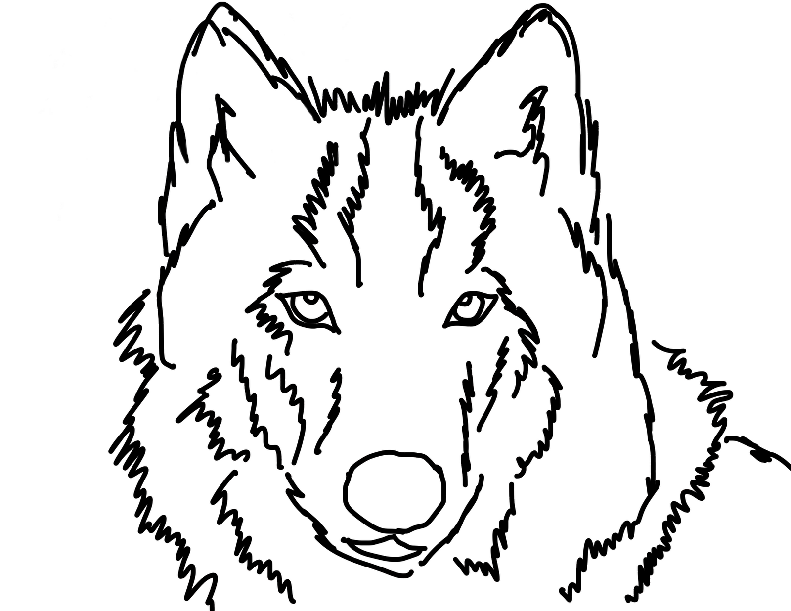 Wolf face coloring - photo#16
