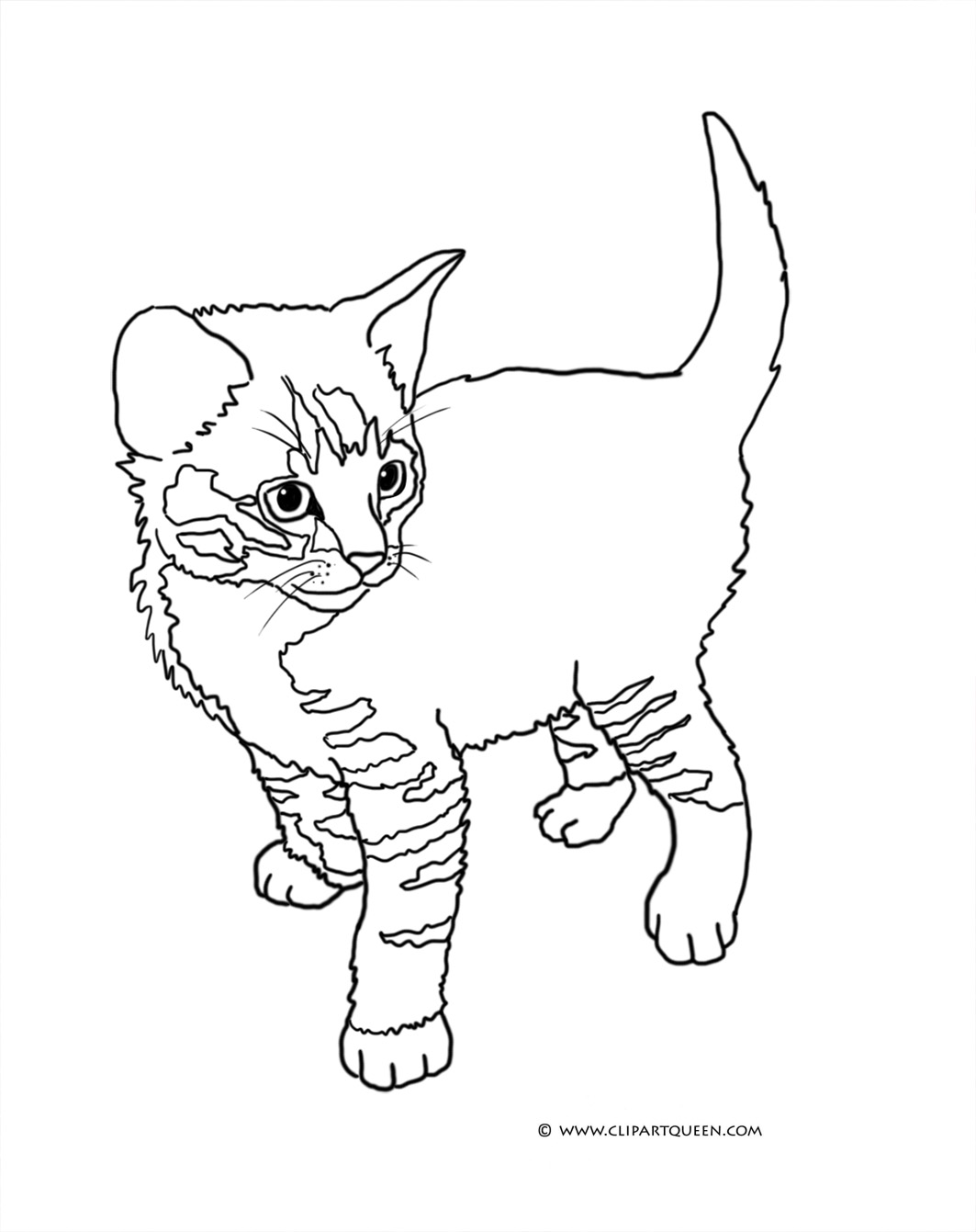 Coloring Pages : Tabby Kitten Standing Coloring Pages Cat ...