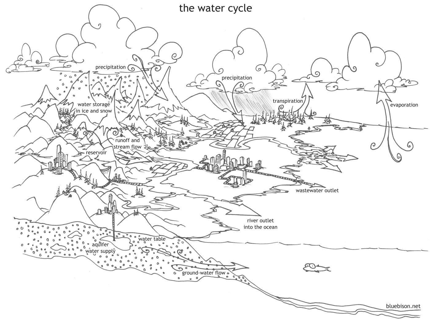 - Coloring PAGE WATER CYCLE - Coloring Home