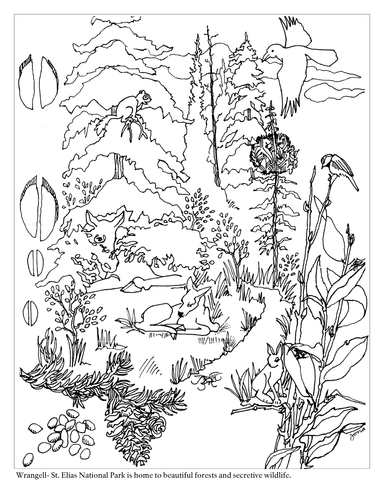 Coloring Animals In The Forest : Forest Coloring Page For Children Coloring Home