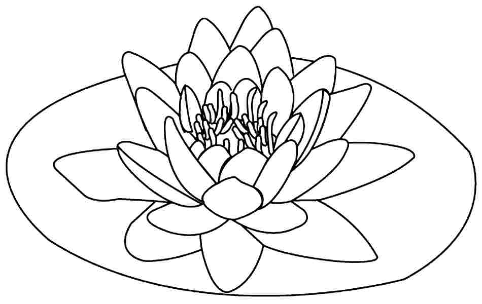 9 Pics Of Lotus Flower Coloring Pages Printable