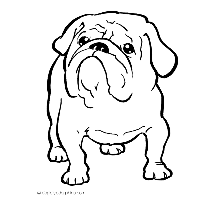 Bulldog Coloring Pictures Coloring Home