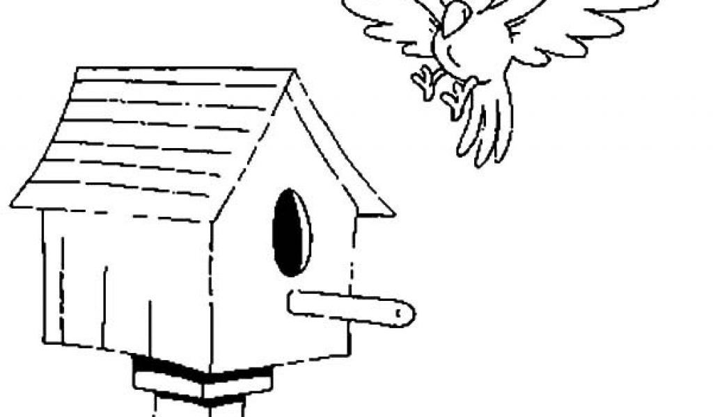 Good bird house coloring pictures Coloring free online coloring ...