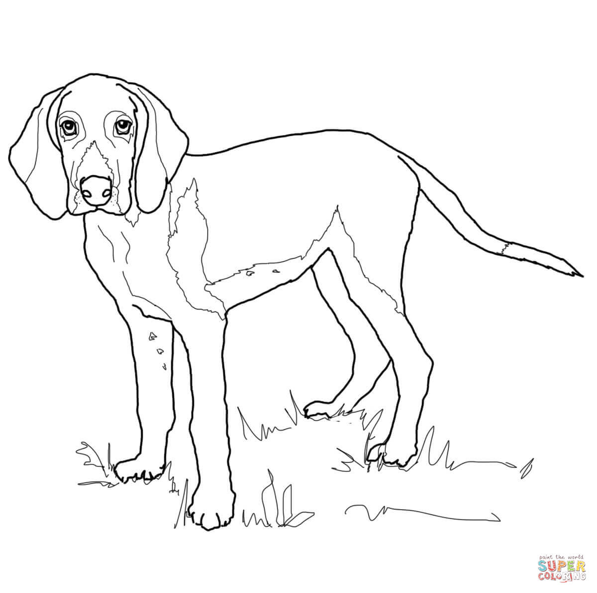 6 Pics Of The Fox And Hound Coloring Pages