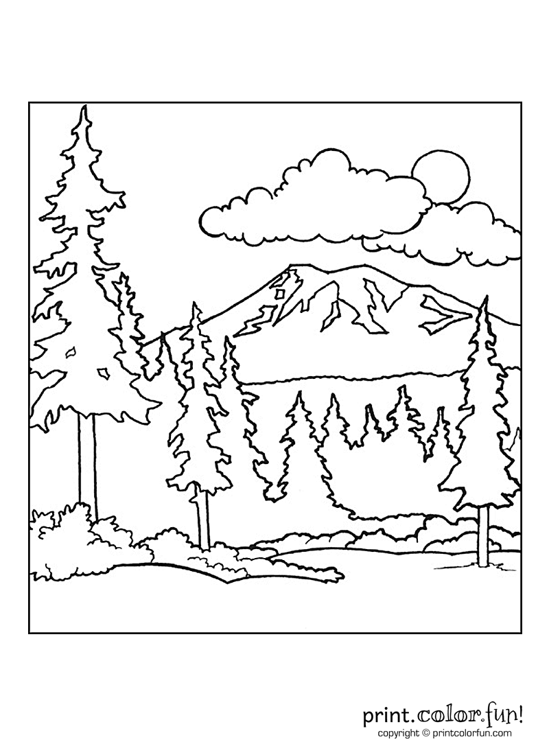 9 Pics Of Forest Background Coloring Page - Forest Coloring Pages ...