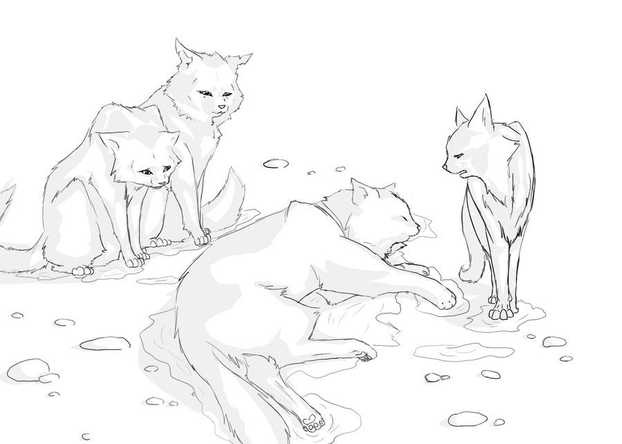 warrior cats squirrelflight coloring pages   Warrior Cat Coloring Pages To Print - Coloring Home