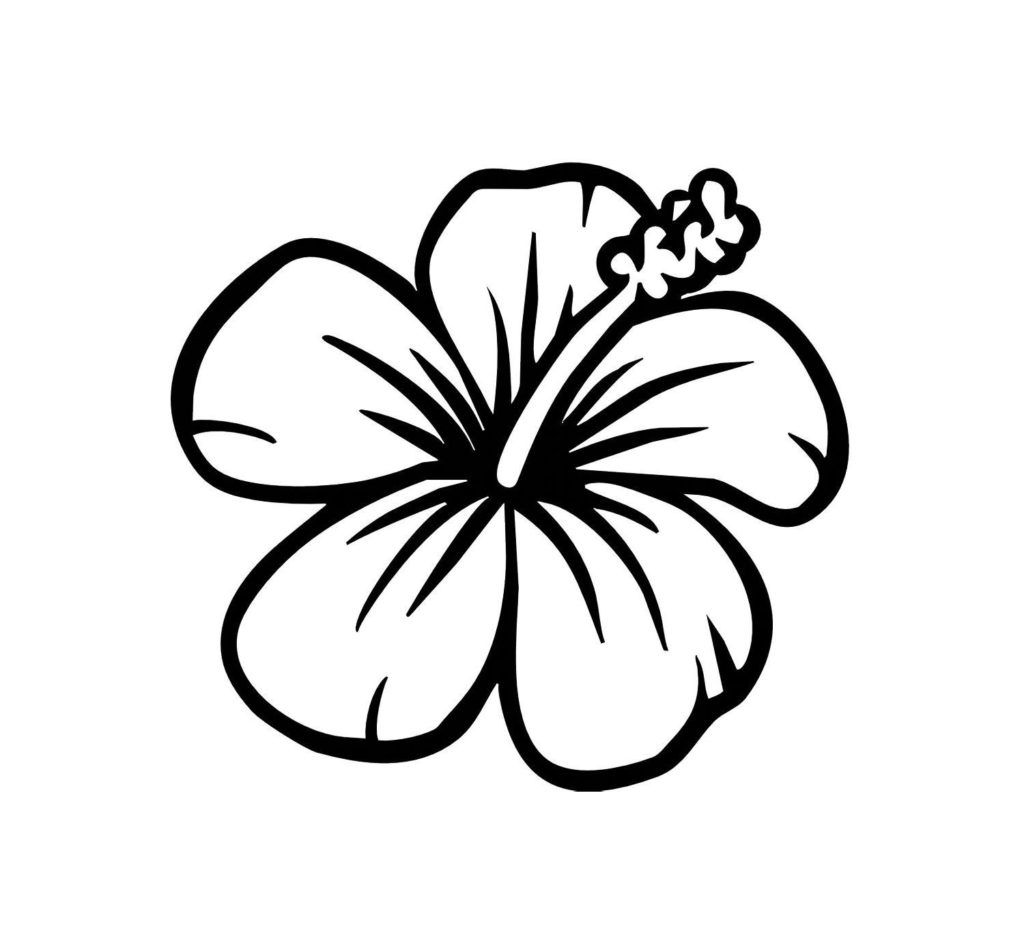 Coloring Pages Hawaiian Flowers Hibiscus Flower