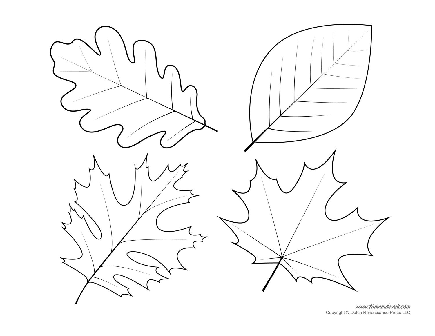 - Traceable Leaf Patterns - Coloring Home