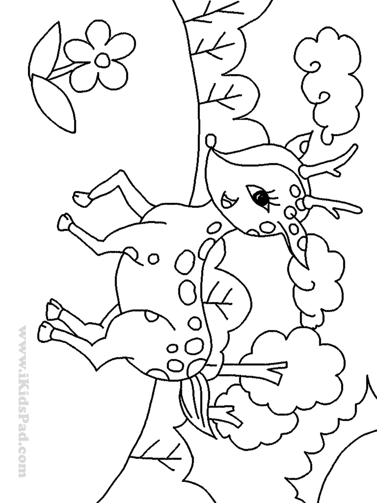 cartoon deer coloring pages - photo#29