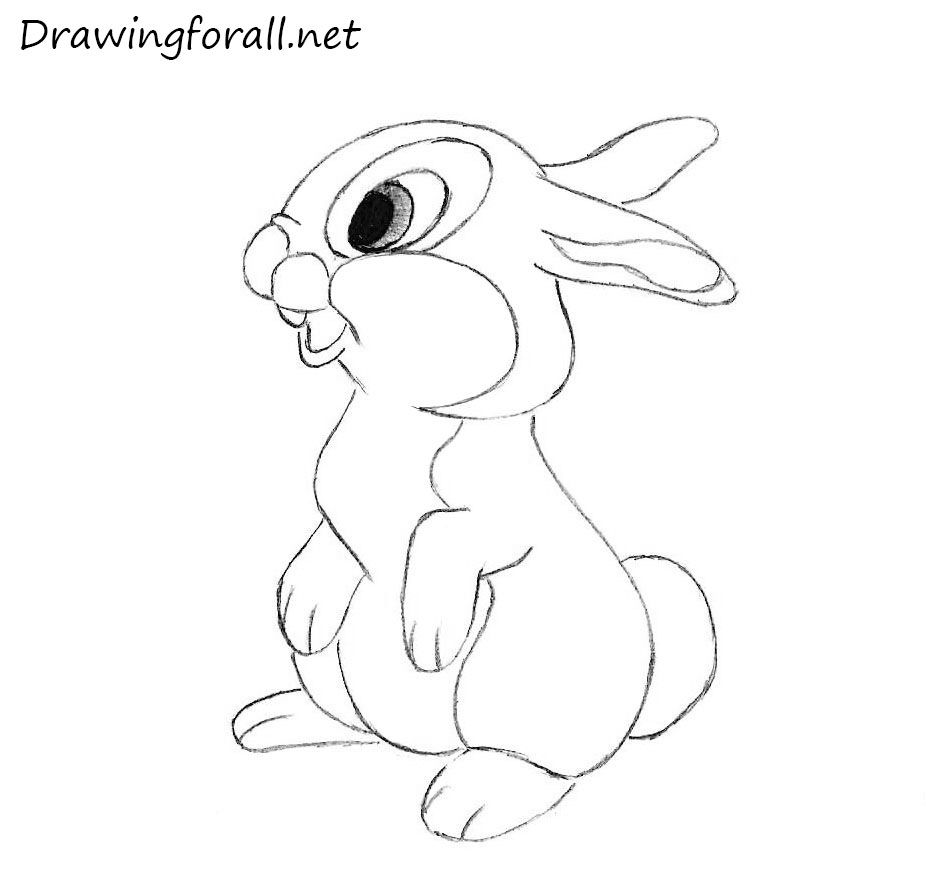 rabbit pictures to draw coloring home